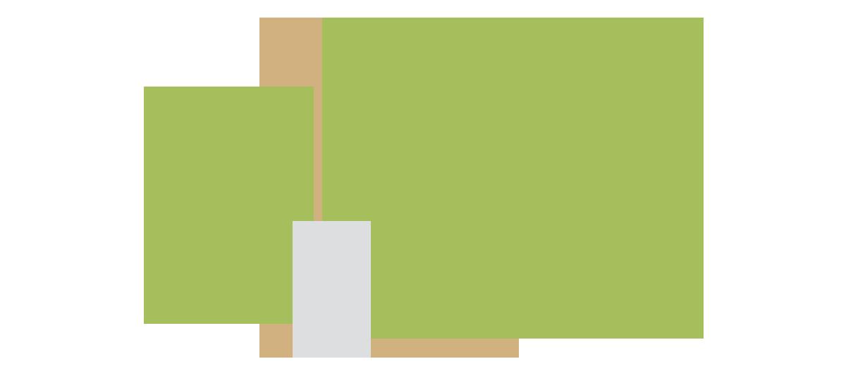 Website Design & Development Service